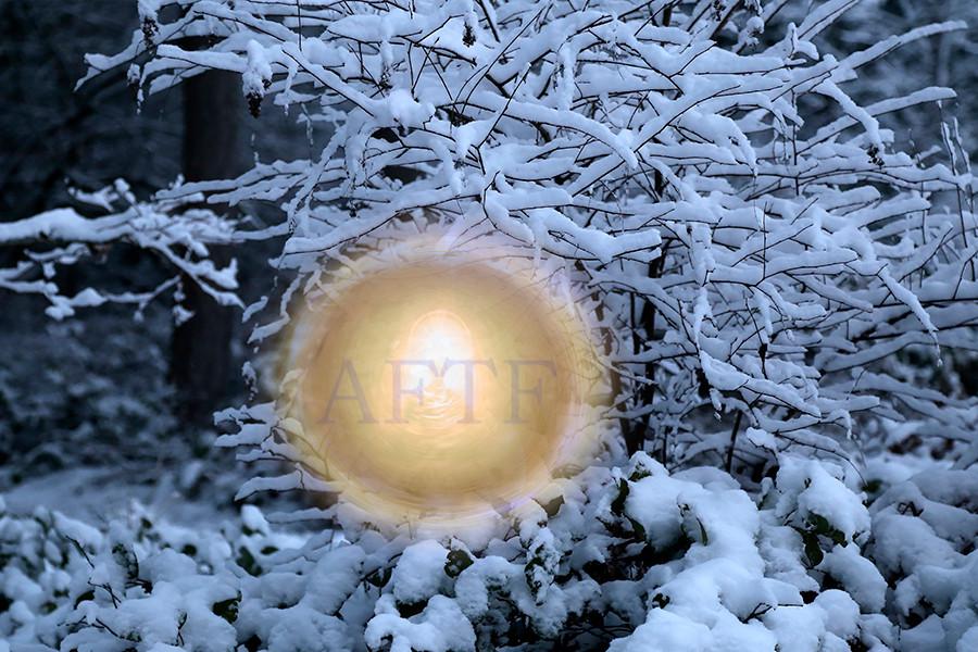 Winter Golden Dream