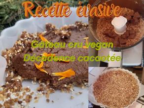 RECETTE EVASIVE Gâteau cru et végan: Décadence cacaotée