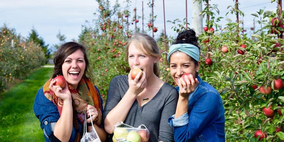 Members - Fall Foliage Viewing Hike & Apple Picking