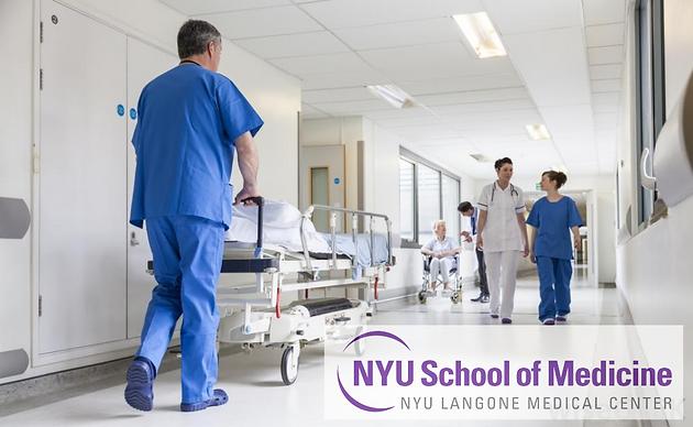 NYU School of Medicine/Bellevue Hospital Patient Navigator
