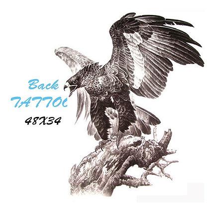 eagle tattoo big tattoo | תעתוע גב ענק נשר