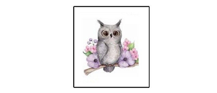 cute owl Temp tattoo   קעקוע זמני ינשוף