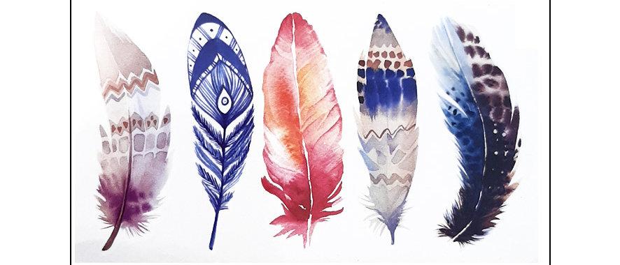 Colors feathers temp tattoo   קעקוע זמני נוצות