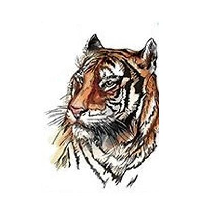 Tiger colored temp tattoo   נמר