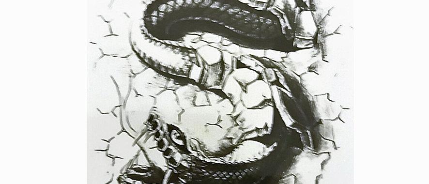 snake / נחש