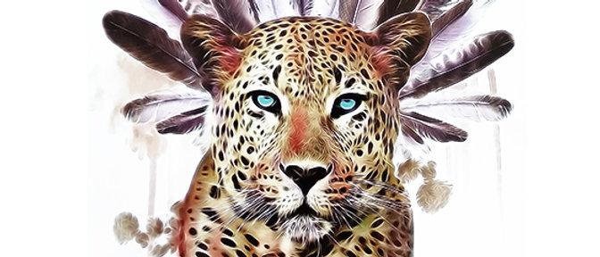 Indian Tiger temp tattoo   נוצות נמר