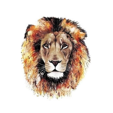 lion colors  temp tattoo| אריה צבע