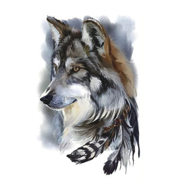 indian wolf husky | האסקי כלב זאב אינדיאני