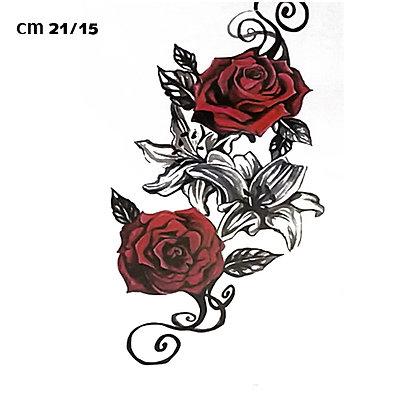 rose flower / ורדים אדומות
