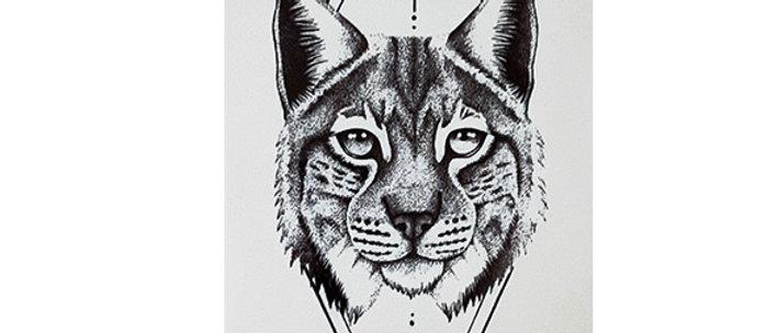 wild cat temporary tattoo | חתול בר קעקוע זמני