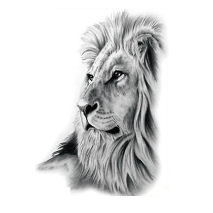 Lion temp tattoo| אריה