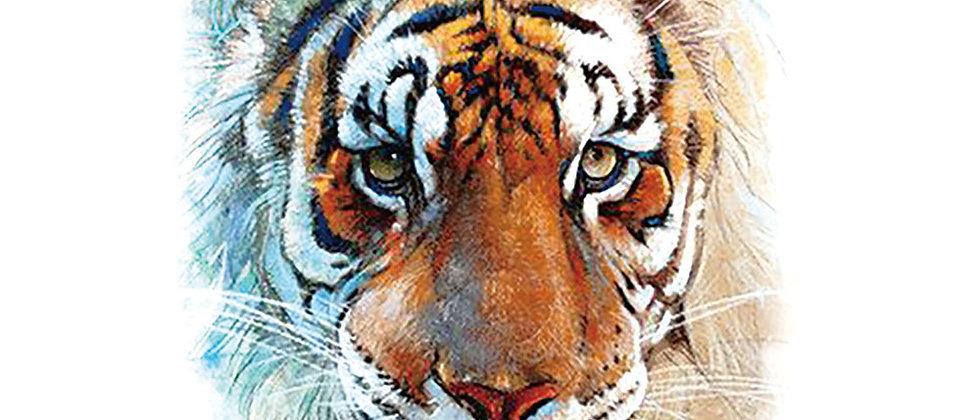 Tiger tattoo /נמר