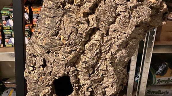 Cork bark tube H 55-60cm