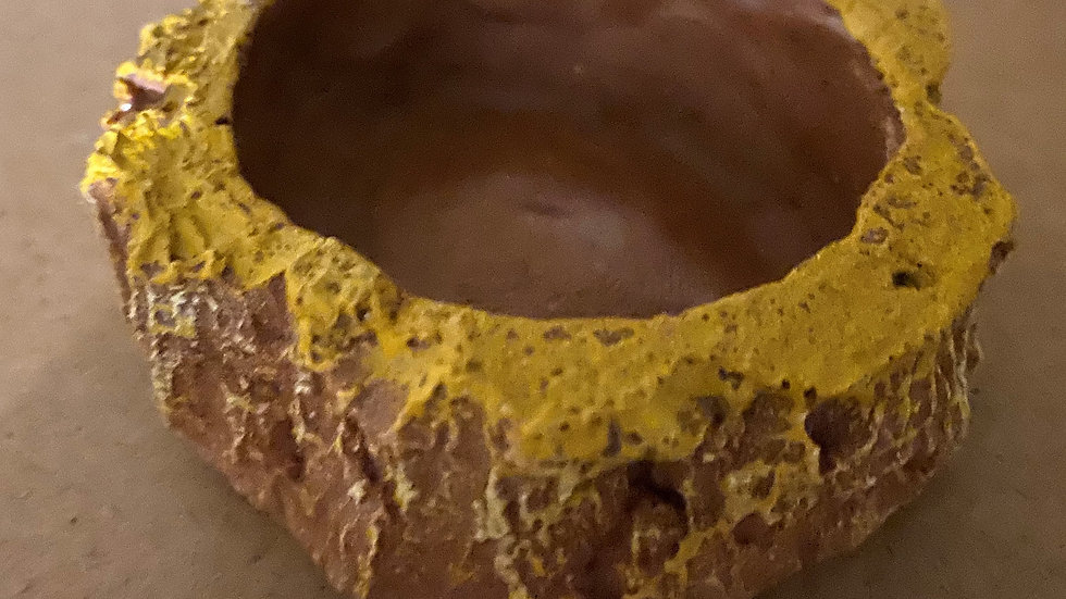 spider water bowl