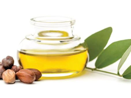 Ingredient Highlight! Jojoba Oil