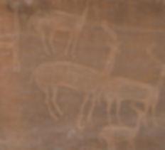 Gravure rupestre - Copie.JPG