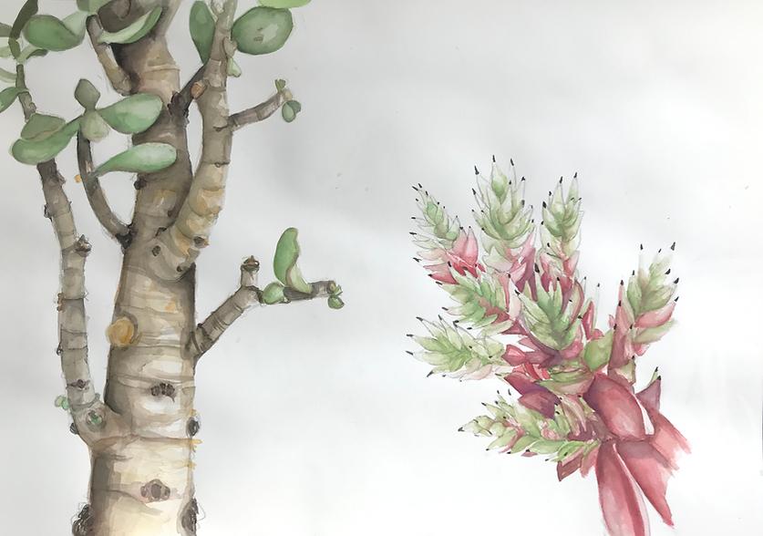 treeandflower.png
