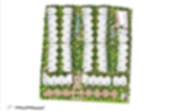 BLOOM_ARCHITECTURE_ANGKOR_GRACE_DRAWING_