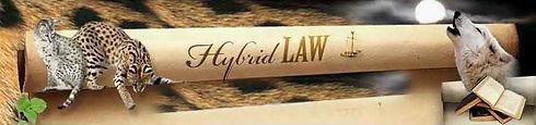 hybridlaw_banner.jpg