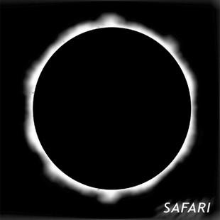 Safari / Safari