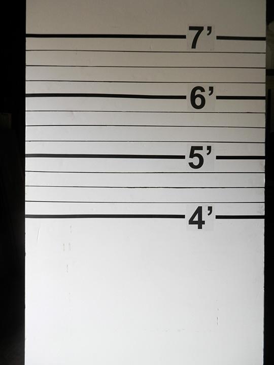 Height Board for Mug Shots