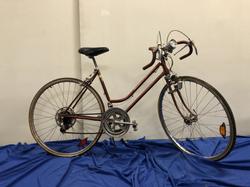 Schwinn Continental Mountain Bike