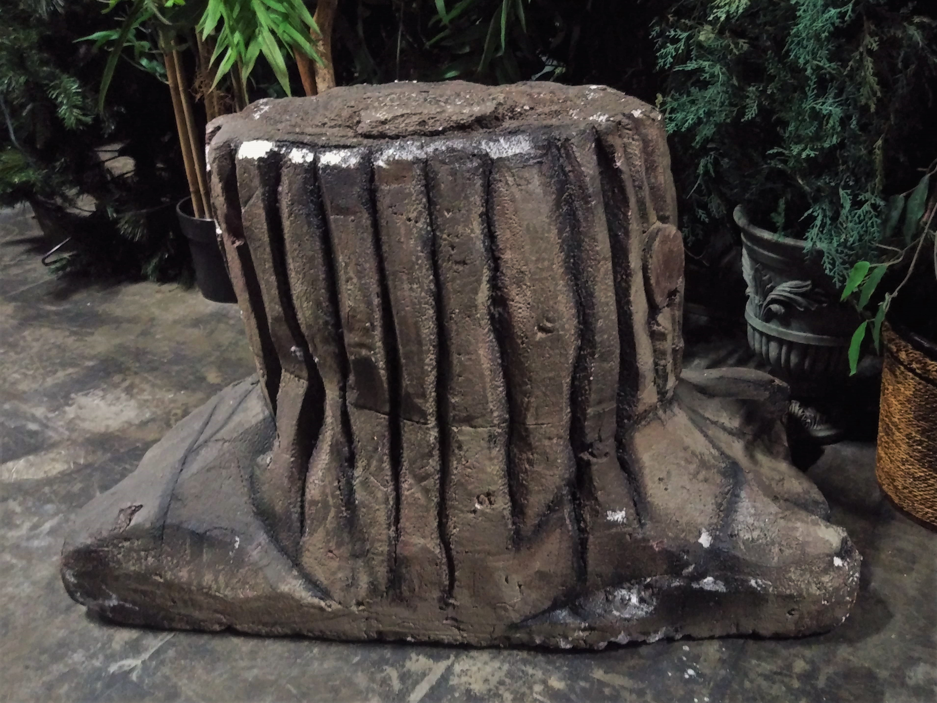Large Tree Stump
