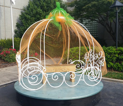 Cinderella Carriage with tulle