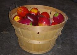 Basket of Applesa