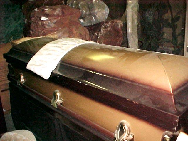 Two-Tone Bronze Coffin