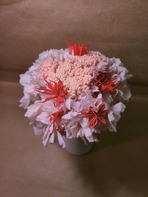 Pink cloud + Vase
