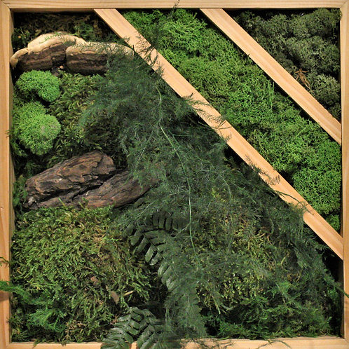 Forest collection: Square wall frame