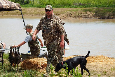 AKC black labrador retriever running at an HRC hunt test with handler Mark Stites in camo hunting gear