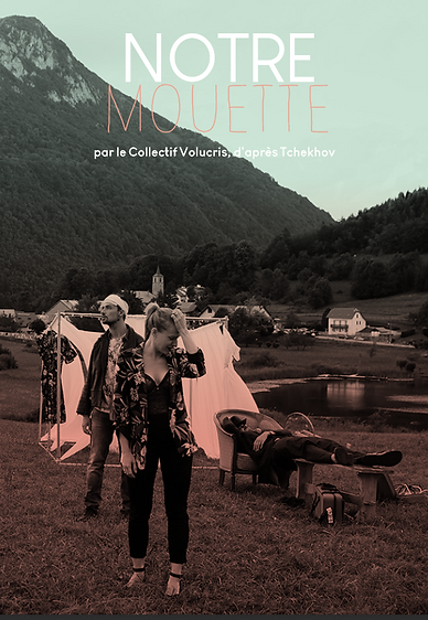 COVER DOSSIER MOUETTE.png