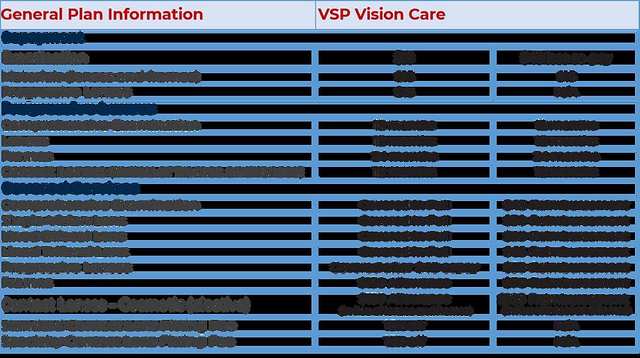 vision description 2.png