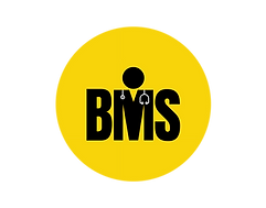 BMS Short_BMS Short.PNG