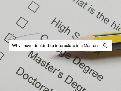 Why I decided to intercalate in a Master's