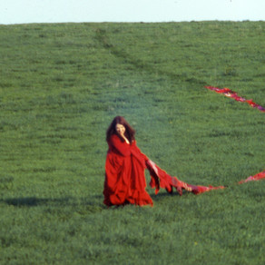 SLIDING SCALE: Oversized Dresses and Small Moments in Visual Art Performance