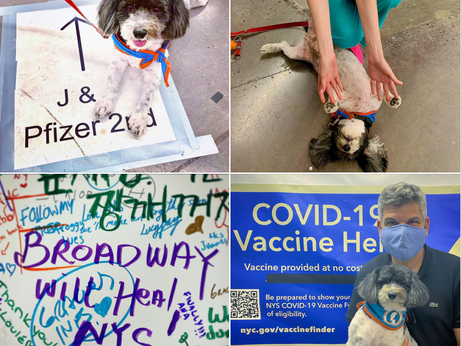 Therapy Dogs for Broadway Vaccination Site