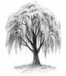 landpo-tree.jpg