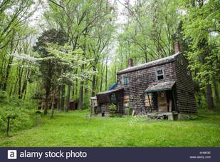 abandoned-house-in-the-woods-KH8K3E.jpg