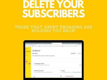 Delete your Subscribers - Mailchimp