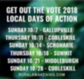 days of action schoharie county ny.png