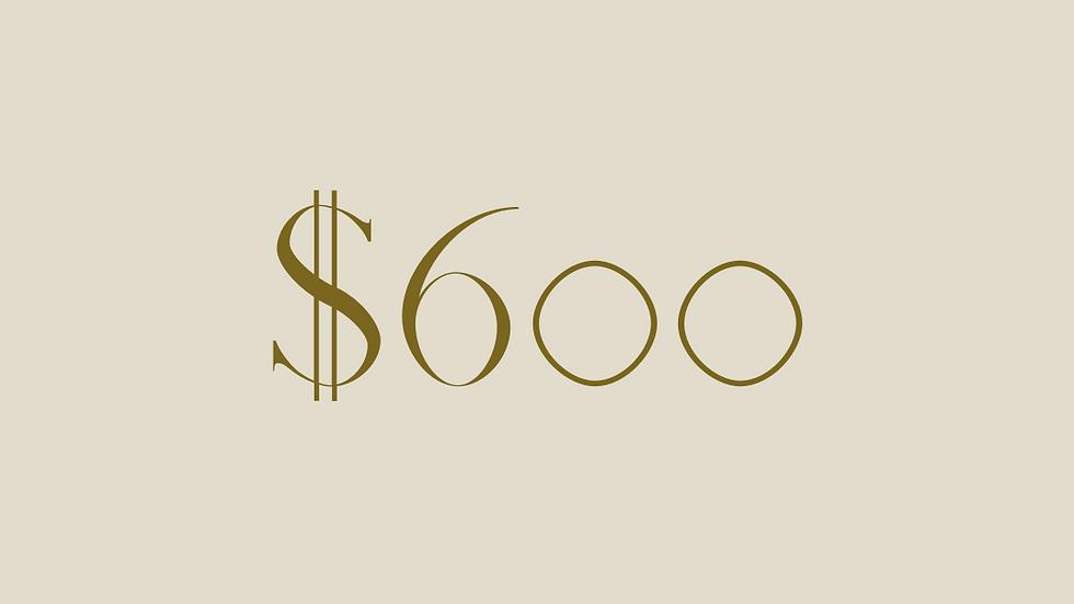 $600 GIFT VOUCHER