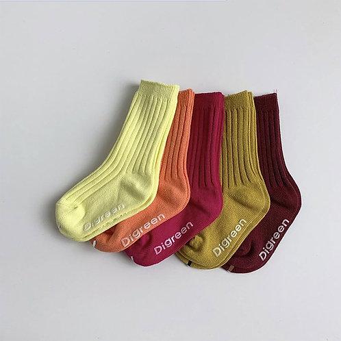Berry Socks 5ea SET