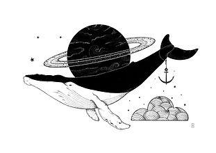 Illustration sur mesure baleine et univers.jpg
