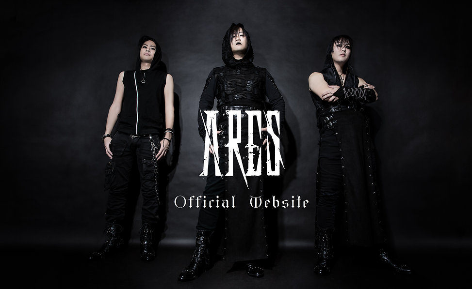 ARES official website.jpg