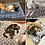Thumbnail: Soft Flannel Thickened Pet Soft Fleece Pad Warm, Sleeping Cover