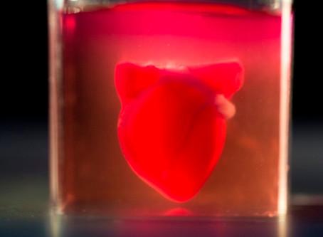 Coração impresso em 3D com tecido humano tem vasos sanguíneos