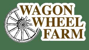 wagone wheel logo.png